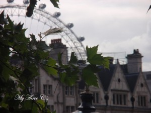 The London Eye. London, England